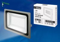 ULF-F16-150W/NW IP65 185-240В SILVER
