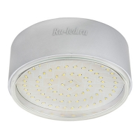 Ecola GX70-N50 Светильник накладной легкий Серебро 42x120