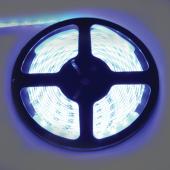 Ecola LED strip PRO  4,8W/m 12V IP65   8mm  60Led/m Blue синяя светодиодная лента на катушке 5м.