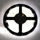 Ecola LED strip PRO  4,8W/m 12V IP65   8mm  60Led/m 2800K 6Lm/LED 360Lm/m светодиодная лента на катушке 5м.