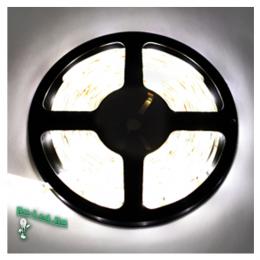 светодиодная лента холодный белый воплотит в жизнь свежие дизайнерские идеи Ecola LED strip 220V STD 7,2W/m IP68 14x7 30Led/m 6000K 12Lm/LED 360Lm/m лента 10м