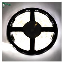 Светодиодная лента одноцветная станет вашим надежным помощником в оформлении интерьера дома Ecola LED strip 220V STD 14,4W/m IP68 14x7 60Led/m 6000K 12Lm/LED 720Lm/m лента 20м
