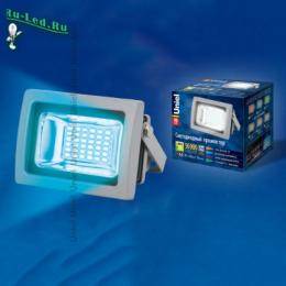домашние прожекторы сочетают в себе очень высокое качество и разумную цену ULF-S04-10W/BLUE IP65 85-265В GREY картон