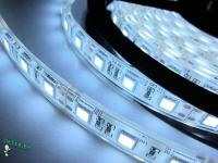 Ecola LED strip PRO  8W/m 12V IP65 8mm 60Led/m 6000K 12Lm/LED 720Lm/m светодиодная лента на катушке 5м.