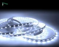Ecola LED strip PRO  8W/m 12V IP20 8mm 60Led/m 4200K 12Lm/LED 720Lm/m светодиодная лента на катушке 5м.